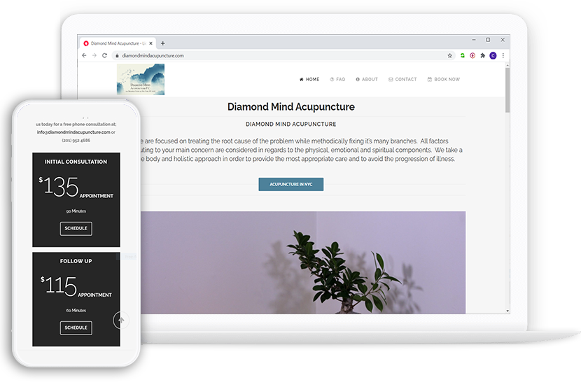 Diamond Mind Acupuncture - website design & development by Connor Perzely